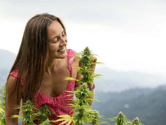 בחורה מריחה קנאביס על רקע נוף הרים